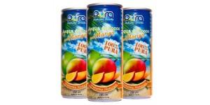ACQUA DI COCCO CON MANGO 250 ml
