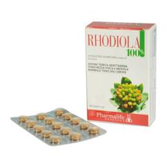 Rhodiola 100%
